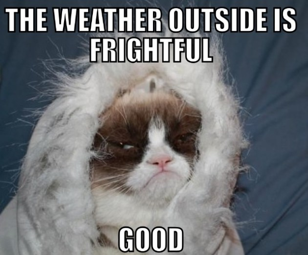 Grumpy Cat's take on the inversion