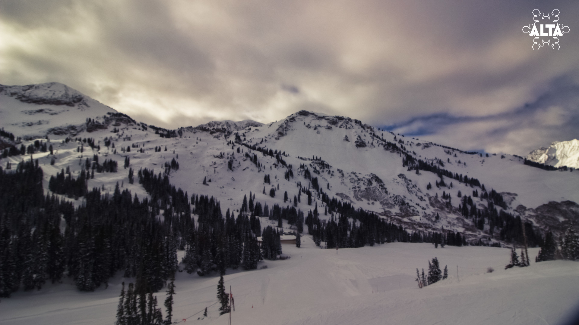 Alta Webcam Friday Afternoon (12/7)